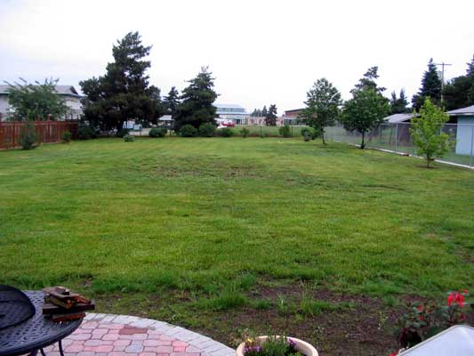 Yard before....